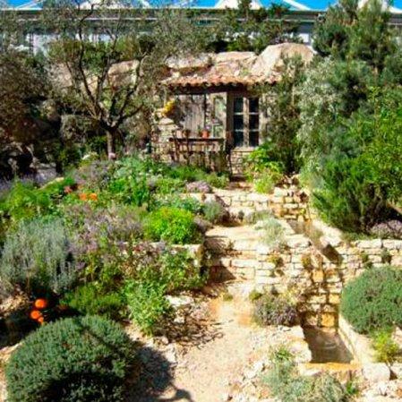 roomenvy - The L'Occitane Garden at RHS Chelsea Flower Show 2010