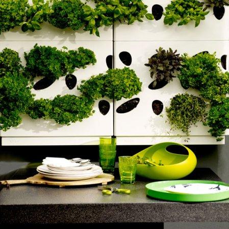 roomenvy - urban herb garden