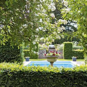 roomenvy - garden swimming pool