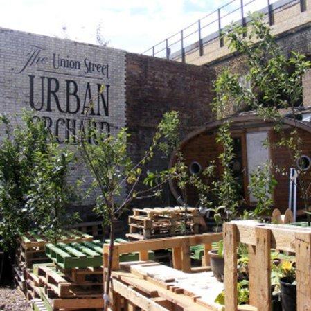 roomenvy - Union Street Urban Orchard