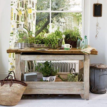 roomenvy - indoor garden