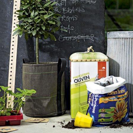 roomenvy - herb garden