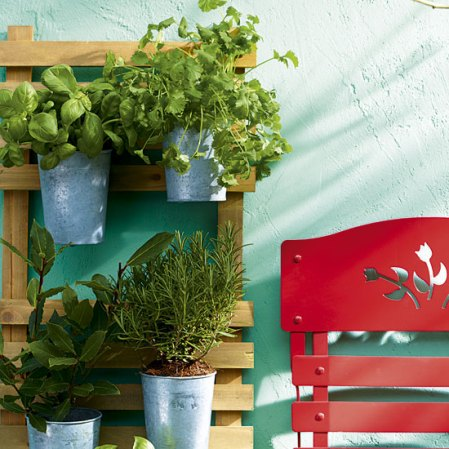roomenvy - garden webchat with Anne MacCaig